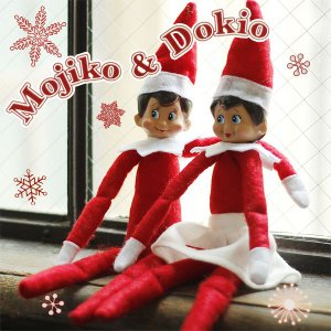 MOJIKO&DOKIO pair モジコ&ドキオペア