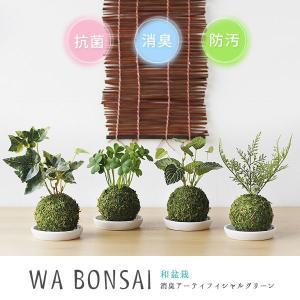 Wa Bonsai・和盆栽 消臭アーティフィシャルグリーン 苔玉タイプ