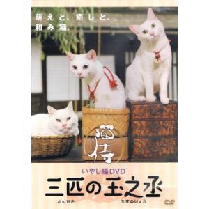【中古DVD】猫侍 いやし猫DVD 三匹の玉之丞|federicomedia