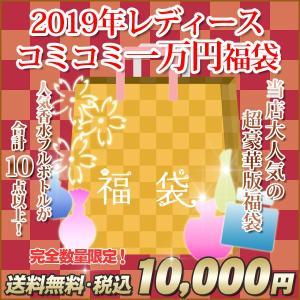【税込&送料無料】2018年◆ 込み込み 10000円 レデ...