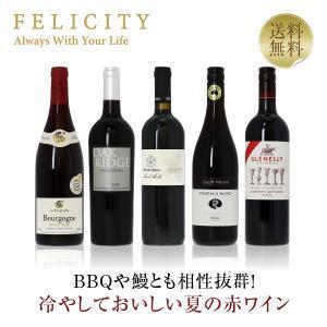 赤ワインセット 世界の実力派ワイナリーから じっくりと楽しむ冬の赤ワイン 5本セット 送料無料 wine set 包装不可  飲み比べ felicity-y