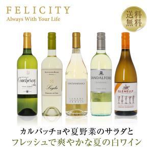 白ワインセット 豊かな香りとコク 冬の白ワイン5本セット 750ml×5 送料無料 wine set 包装不可  飲み比べ felicity-y