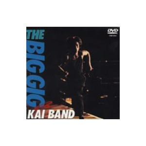 THE BIG GIG / 甲斐バンド (DVD)|Felista玉光堂