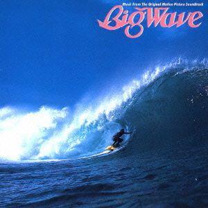 Big Wave(30th Anniversary Edition) / 山下達郎 (CD)