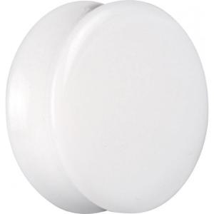 ワイルドキャット Wildcat ユニセックス イヤリング・ピアス ジュエリー・アクセサリー White Heat Acryl Earplug white|fermart-hobby