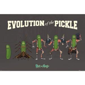 リック&モーティ Rick And Morty グッズ Evolution Of The Pickle Poster black fermart-hobby