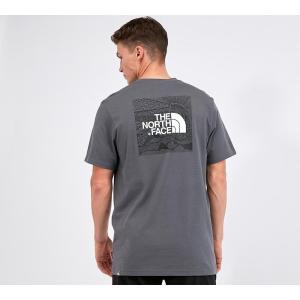 ザ ノースフェイス The North Face メンズ Tシャツ トップス redbox celebration t-shirt Van Grey|fermart-hobby