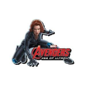 ブラック ウィドウ アクアリウス Aquarius Avengers: Age of Ultron Black Widow Funky Chunky Magnet|fermart-hobby