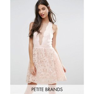 リトル ミストレス レディース パーティードレス ワンピース・ドレス Little Mistress Petite Scallop Skater Dress With Crochet Lace Skirt Light pink|fermart