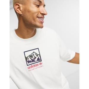アディダス adidas Originals メンズ Tシャツ トップス adiplore oversized premium graphic t-shirt in off white オフホワイト|fermart