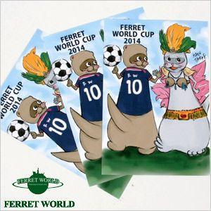 (受注生産) (FWF) 日本代表応援グッズ フェレットワールド カップシリーズ 「エース&カーニバル娘。 」ポストカード3枚組(限定) (オリジナル)  サッカー 日本|ferretwd