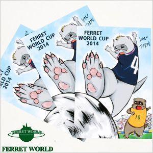 (受注生産) (FWF) 日本代表応援グッズ フェレットワールド カップシリーズ 「シュート! 」ポストカード3枚組(限定) (オリジナル)  サッカー 日本代表 フェレッ|ferretwd