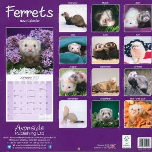 フェレット カレンダー  KP(キンペックス) 2020 フェレットカレンダー カレンダー2020 壁掛け 雑貨 グッズ 写真 かわいい 小動物 アニマル 月めくり|ferretwd|02