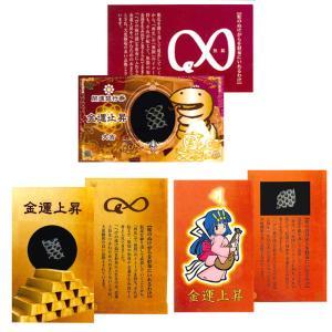 金運カード(ヘビの皮入り) 蛇 ヘビ へび 它 巳 カード 金運 開運 金運グッズ 開運グッズ(ゆうパケットOK)|ferretwd
