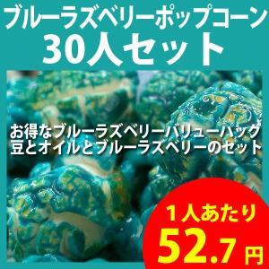 ポップコーン ブルーラズベリーポップコーン 30人セット ポップコーン豆 フレーバー オイル 材料セット|fescogroup