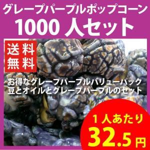 ポップコーン グレープパープルポップコーン 1000人セット ポップコーン豆 フレーバー オイル 材料セット|fescogroup