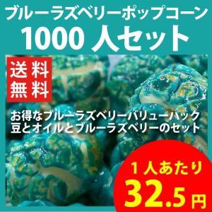 ポップコーン ブルーラズベリーポップコーン 1000人セット ポップコーン豆 フレーバー オイル 材料セット|fescogroup