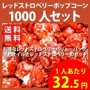 ポップコーン レッドストロベリーポップコーン 1000人セット ポップコーン豆 フレーバー オイル 材料セット|fescogroup