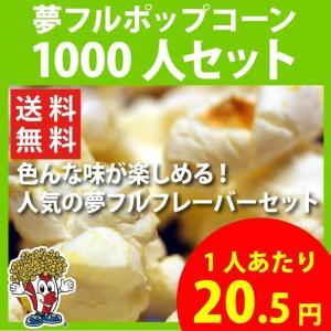 ポップコーン 夢フルポップコーン 1000人セット ポップコーン豆 フレーバー オイル 材料セット|fescogroup