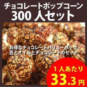 ポップコーン チョコレートポップコーン 300人セット ポップコーン豆 フレーバー オイル 材料セット|fescogroup