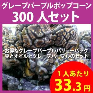 ポップコーン グレープパープルポップコーン 300人セット ポップコーン豆 フレーバー オイル 材料セット|fescogroup