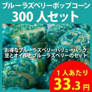 ポップコーン ブルーラズベリーポップコーン 300人セット ポップコーン豆 フレーバー オイル 材料セット|fescogroup