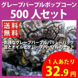 ポップコーン グレープパープルポップコーン 500人セット ポップコーン豆 フレーバー オイル 材料セット|fescogroup