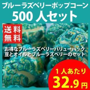 ポップコーン ブルーラズベリーポップコーン 500人セット ポップコーン豆 フレーバー オイル 材料セット|fescogroup