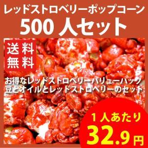 ポップコーン レッドストロベリーポップコーン 500人セット ポップコーン豆 フレーバー オイル 材料セット|fescogroup