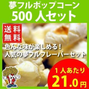 ポップコーン 夢フルポップコーン 500人セット ポップコーン豆 フレーバー オイル 材料セット|fescogroup