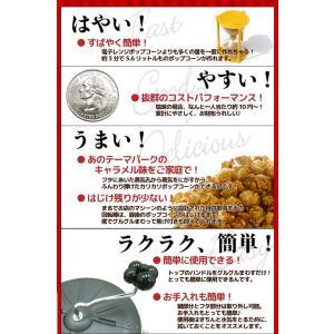 ポップコーンメーカー IH対応 ステンレス製 ポップコーンポッパー Sweet&Easy Silver スターターキット付 家庭用 調理鍋|fescogroup|03