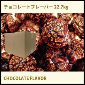 チョコレートフレーバー22.7kgGOLD MEDALGOLD MEDAL ポップコーン|fescogroup