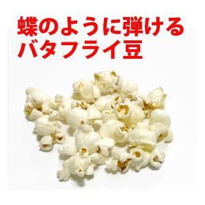 ポップコーン ポップコーン豆 バタフライタイプ 2kg 500g×4袋 約100人分 種|fescogroup|03