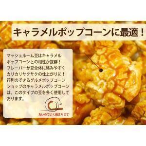 ポップコーン ポップコーン豆 マッシュルームタイプ 22.68kg 約1130人分KING 種 業務用 イベント向け|fescogroup|04