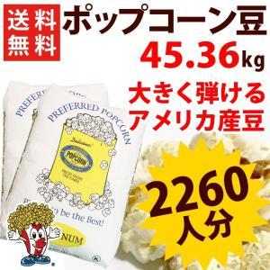 ポップコーン豆 バタフライ(22.68g×2)PLATINUM アメリカ産 プレファード|fescogroup