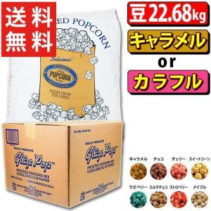 ポップコーン プレファード バタフライ豆 PLATINUM 22.68kg + キャラメル or カラフルフレーバー22.7kg|fescogroup