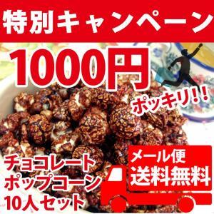 ポップコーン 1000円ポッキリ!チョコレート10人セット ポップコーン豆 フレーバー オイル|fescogroup