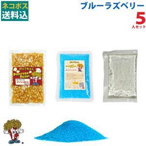 メール便送料込 ポップコーン ブルーラズベリーポップコーン 5人セット ポップコーン豆 フレーバー オイル 材料セット|fescogroup