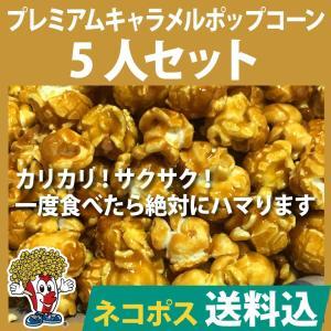 ネコポス送料込 ポップコーン プレミアムキャンディコーティングフレーバーポップコーン5人セット ポップコーン豆 フレーバー オイル 材料セット|fescogroup
