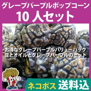 ネコポス送料込 ポップコーン グレープパープルポップコーン 10人セット ポップコーン豆 フレーバー オイル 材料セット|fescogroup