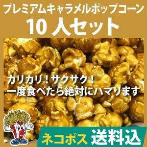 ネコポス送料込 ポップコーン プレミアムキャンディコーティングフレーバーポップコーン10人セット ポップコーン豆 フレーバー オイル 材料セット|fescogroup