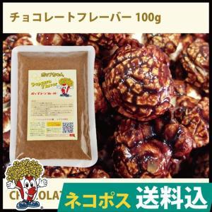 ネコポス便送料込 チョコレートフレーバー100g GOLD MEDAL ポップコーン|fescogroup