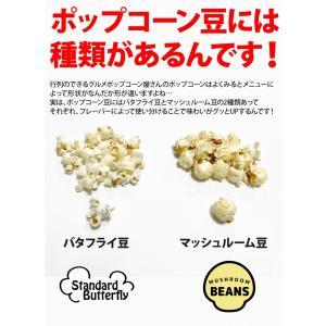 ネコポス送料込 ポップコーン豆500g バタフライorマッシュルーム|fescogroup|02
