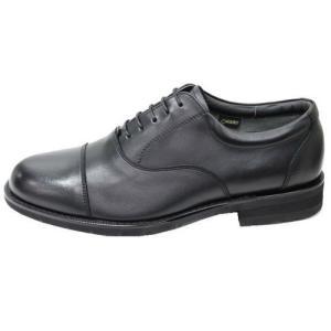 リーガル REGAL 32NRBB ゴアテックス ストレートチップ ビジネスシューズ 革靴 靴 就職祝 成人式 就活 リクルート 父の日 プレゼント fg-store 02