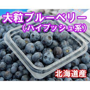 【令和3年収穫】北海道産 大粒ブルーベリー(生)250g×4個 fgkami