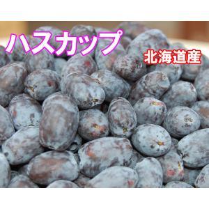 北海道の果実 令和3年収穫ハスカップ(冷凍)500g×2個 fgkami
