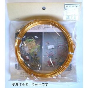 石崎剣山 ARTWIRE ゴールド|ficst