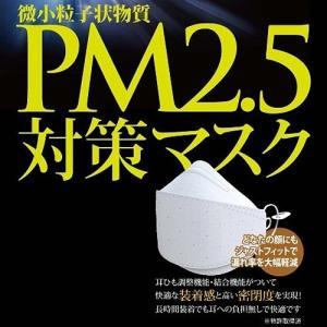 【数量限定セール】PM2.5対策マスク 1枚入 高機能マスク [黄砂 花粉 ウイルス PM2.5 インフルエンザ 対策 ますく 防塵 業務用 作業用 花粉 保護] ficst