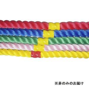 綱引き ロープ つなひき S-8642 カラフルロープ3m 赤 (SWT)(QBJ37)