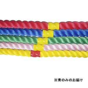 綱引き ロープ つなひき S-8643 カラフルロープ3m 青 (SWT)(QBJ37)